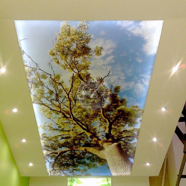 натяжной потолок с фотопечатью Ульяновск
